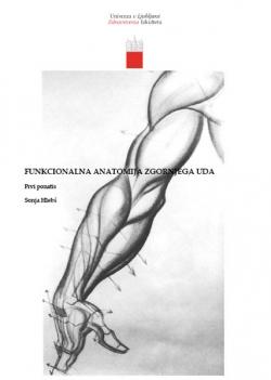 Funkcionalna anatomija zgornjega uda